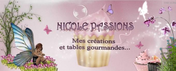 Bannière Nicole Passions