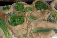 DSC_1415 les bonnes herbes à cuisiner